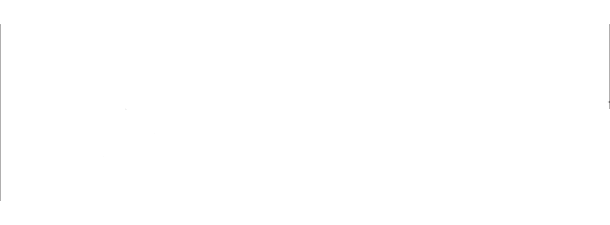 Nantha Associates Logo White 3